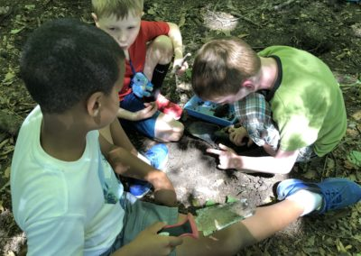Digging for invertebrates